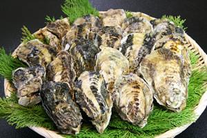 牛窓産殻付き牡蛎